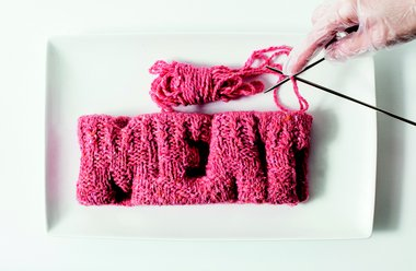 Next Nature Network - Knitted Meat.jpg